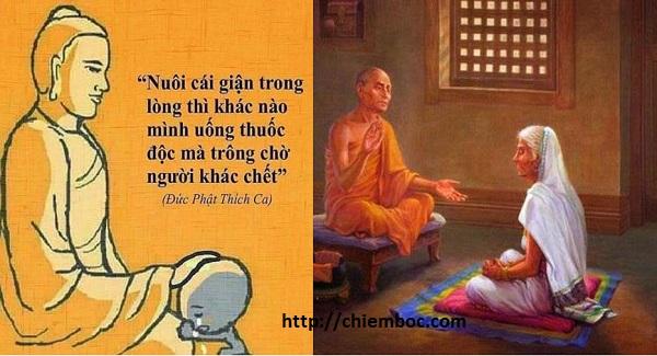 Phật dạy cái giá của sự tức giận