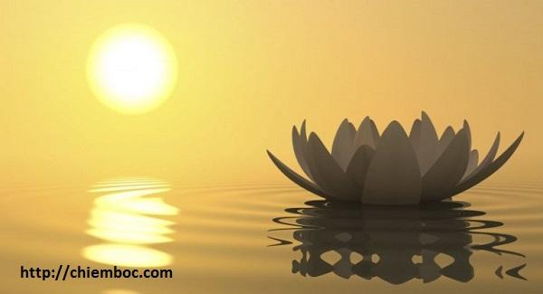 Đức Phật dạy triết lý ở đời, bất kỳ ai cũng nên đọc một lần để tâm bình yên giữa dòng đời vạn biến