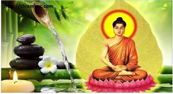Phật chỉ ra cách tu tâm tạo nghiệp lành để trọn đời hưởng hạnh phúc, bình an ai cũng nên nằm lòng.