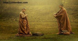 Phật gia giảng 'cần buông bỏ', nhưng rốt cuộc là buông bỏ điều gì?