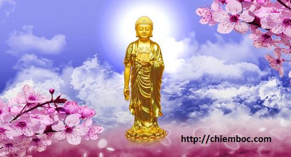 10 dấu hiệu cho thấy bạn đang được Phật che chở phúc dày nhờ tích đức, tu luyện ở tiền kiếp