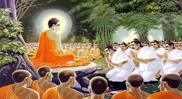 """Phật dạy báo ứng tội """"Kiếm ăn một cách tà mạng"""""""