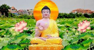 Tột cùng của Luân Hồi là Khổ Đau, tột đỉnh của Phật Pháp là An Lạc