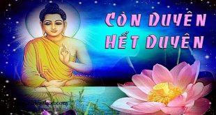 3 nỗi khổ lớn nhất đời người và cách để bạn vượt qua dễ dàng theo lời Phật dạy