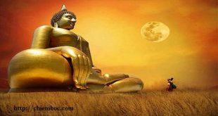 Phương pháp thay đổi số mệnh vô cùng đơn giản do Đức Phật truyền dạy