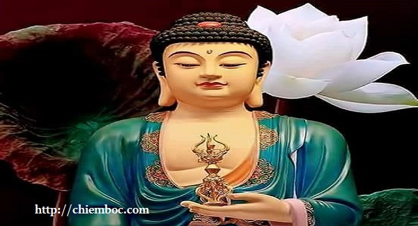 Chọn hoa tươi cúng dường chư Phật như thế nào để được hưởng phúc báu