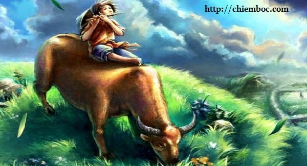 Cậu bé chăn trâu có tấm lòng lương thiện cảm thấu trời xanh
