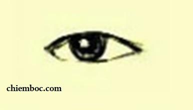 Xem hình dáng đôi mắt cho biết về tính cách tiềm ẩn, giúp bạn lựa chọn cách sống và công việc phù hợp