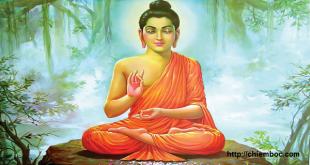 Đọc 8 Lời dạy của Phật mỗi tối trước khi ngủ có thể thay đổi vận mệnh sống