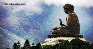 Phật dạy về chữ tham, lòng tham và nỗi khổ vì tham