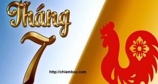 Tử vi tháng 7/2018 tuổi Dậu (Âm lịch): Có dấu hiệu lừa đảo tiền bạc