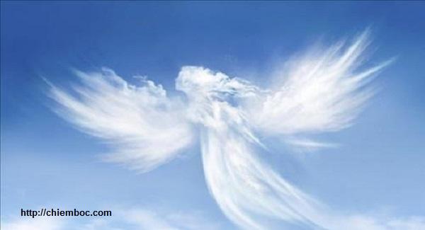Dấu hiệu bạn có thiên thần hộ mệnh