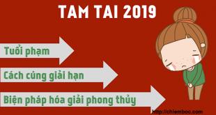 TAM TAI 2019: Tuổi nào gặp hạn, cách cúng và hóa giải thế nào mới đúng và hiệu quả?