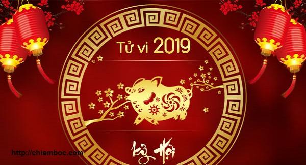 Tử vi tuổi Hợi năm Kỷ Hợi 2019 đương đầu Thái Tuế, họa phúc khôn lường