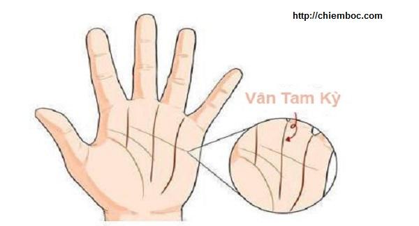 Ai là quý phu nhân hay nữ đại gia đều có tướng tay và vân tay như thế này, hãy thử mở lòng bàn tay xem, bạn sẽ thấy ngay