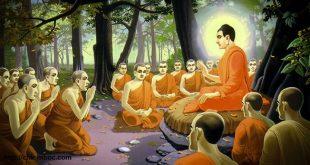 Đức Phật Thích Ca Mâu Ni dạy đệ tử phân biệt chính giác như thế nào?