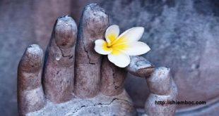 Vượt qua thất tình với lời Phật dạy về nhân duyên