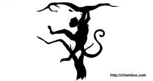 Bạn nhìn thấy con khỉ hay con hổ, đáp án sẽ giúp bạn khám phá ra cả ưu điểm lẫn nhược điểm của mình
