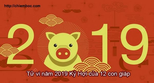 XEM SƠ LƯỢC TỬ VI KỶ HỢI 2019 CỦA 12 CON GIÁP