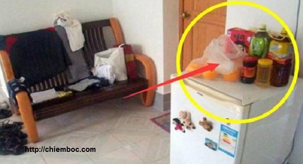 Cứ để thứ này trên tủ lạnh, 3 đời sau cũng không giàu nổi