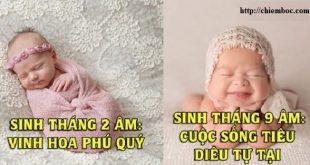 Vận mệnh em bé sinh năm 2019 qua 12 tháng sinh