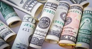 Bói tiền bạc của 12 con giáp trong ngày 15/04/2019: Thìn bị hại, Ngọ có tiền