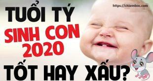 Tuổi Tý sinh con năm 2020 tốt hay xấu? Tuổi Tý có nên sinh con năm tuổi 2020? Cần chú ý những điều gì?