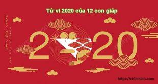 Luận giải thông tin chính xác về cát hung trong sự nghiệp, tài lộc, tình duyên của 12 con giáp trong năm 2020