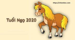 Cách hóa giải Thái Tuế 2020 cho tuổi Ngọ: Học cách thay đổi để tăng phúc, giảm họa