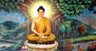 Lời Phật dạy về chấp niệm: Chỉ khi vứt bỏ điều này, đời người mới được thanh thản tự do