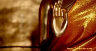 Miệng tu Phật nhưng lòng không tu tâm, đánh mất cơ duyên an lạc có hối cũng muộn rồi