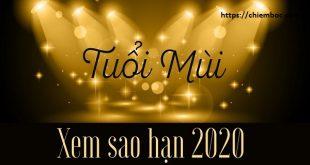 Xem SAO HẠN 2020 tuổi Mùi: Chi tiết các tuổi Quý Mùi, Tân Mùi, Đinh Mùi, Ất Mùi, Kỷ Mùi