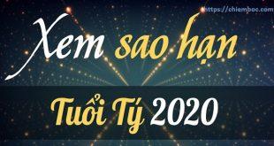 Xem SAO HẠN 2020 tuổi Tý: Đầy đủ các tuổi Canh Tý, Nhâm Tý, Giáp Tý, Bính Tý, Mậu Tý