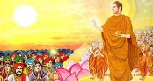 Học cách Đức Phật phân biệt người ngu và kẻ trí để biết nên gần hay nên xa một ai đó