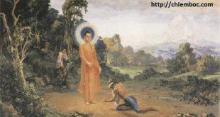 Phật dạy: Người chết có thể mang theo thứ gì?