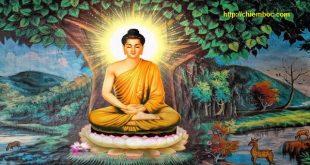 11 dấu hiệu cho thấy bạn được Thần Phật che chở