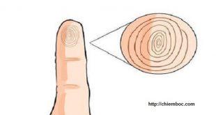 Xem đường chỉ tay trên ngón út biết ngay vận mệnh về già
