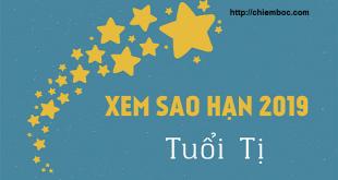 Xem sao hạn năm 2019 của tuổi Tỵ: Chi tiết cho các tuổi Quý Tỵ, Tân Tỵ, Ất Tỵ, Kỷ Tỵ, Đinh Tỵ