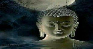 Buông bỏ là gì? Đọc 3 câu chuyện Phật giáo dưới đây sẽ rõ