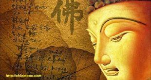 """Phật giáo lý giải vì sao """"Đời cha ăn mặn, đời con khát nước"""""""