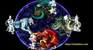 Giải thích vị trí của tứ tượng Thanh Long, Bạch Hổ, Chu Tước, Huyền Vũ trong phong thủy