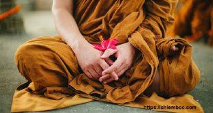 Học Phật 4 chữ để sống chung với mẹ chồng không còn là nỗi ác mộng