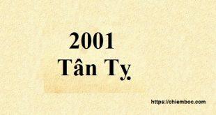 Xem Tử vi 2019 tuổi Tân Tỵ sinh năm 2001 nam mạng