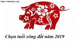 Xem tuổi xông đất năm 2019 cho chủ nhà Đinh Hợi