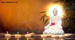 Lời Phật dạy: Khen chớ vội mừng, bị chê cũng chớ vội buồn