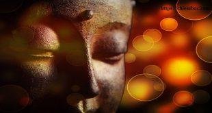 30 Lời Phật dạy về hạnh phúc vô cùng đáng quý không nên bỏ lỡ