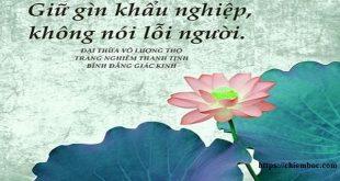 45 lời Phật dạy về lời nói không biết dễ phạm lỗi khiến bản thân hối hận