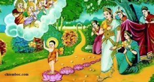 Một ngày của Đức Phật như thế nào?