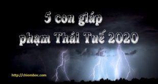 5 con giáp phạm Thái Tuế 2020 là ai?