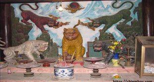 Vì sao người Việt có tín ngưỡng thờ thần Hổ mà không phải là thờ Sư Tử?
